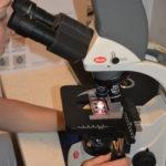 digitální mikroskop
